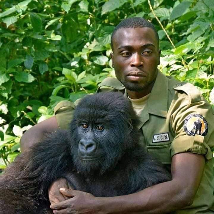 Freddy Mulongo-Virunga 1.jpg, avr. 2020